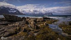 Lofoten (nsiepelbakker) Tags: lofoton landscape seascape putdoor mountains clouds omdm5 zuiko1250mm ngc