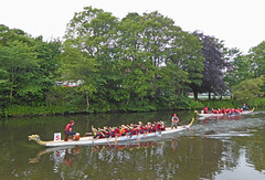Photo of Dragonboat Racing