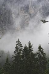 Reintal clouds (Hagenz) Tags: de garmischpartenkirchen alpen bayern wandern wettersteingebirge zugspitze deutschland hiking alps bavaria germany landscape landschaft natur nature nikon d7100 mountains berge clouds wolken nebel fog forest wald rocks felsen reintal