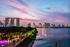 Marina Barrage, Singapore (Renée S. Suen) Tags: singapore june2018 marinebarrage lanscape sunset skyline water buildings lights night sky city bridge building tree