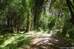20180330-_DSC0130.jpg (drs.sarajevo) Tags: sarvestan ruraliran iran nomads farsprovince chamsatribe