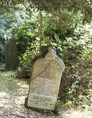 The family of David and Mary Davis re-united (IanAWood) Tags: bringoutyourdead cemeteryclub cemeteryparks citiesofthedead graveyards headstonehunting lboflambeth london londonsdead londonsmagnificentsevenvictoriancemeteries londonsnecropolis londonsparks nikkorafs58mmf14g nikondf norwoodroad southmetropolitancemetery walkingwithmynikon westnorwoodcemetery westnorwoodmemorialpark