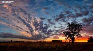 Tharbies Farm sunset, Sawbridgeworth Tharbies