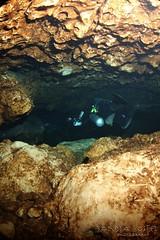 IMG_0362 (2) (SantaFeSandy) Tags: cow cowsink guybryant sandrakosterphotography sandrakosterphotographycom sandykoster sandra scuba santafesandysandrakosterphotographycom swimmers swim canon ikelite laraville mayo nsscds sandrakoster cave cavern camera catfish caves cavedivers underwaterphotography underwater experiment sidemount runningline reels wetsuit drysuit scubapro scubadiving scubadivers bare nomad nomadltz nomadls clay claybanks selfie