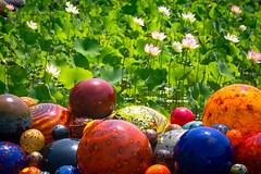 Chihuly Globes at the Biltmore (LauriNovakPhotography) Tags: northcarolina chihuly gardens asheville biltmore