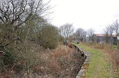 32503 (benbobjr) Tags: england english unitedkingdom gb greatbritain britain british southyorkshire kiveton norwood cuckoodyke chesterfieldcanal canal watercourse ruins path pathway footpath bridleway publicfootpath