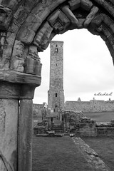 (Ailedail) Tags: scotland standrews fife uk united kingdom cathedral stones bw architecture