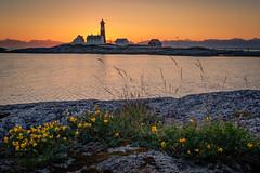 Midnight at Tranøy Lighthouse (Reidar Trekkvold) Tags: tranã¸y xt2 xf1024ois atlantic blomster flowers fujifilm fyr landscape lighthouse midnight natur nature nordnorge nordland norway sea seascape seaside sj㸠sommer summer sun sunset tranøy sjø