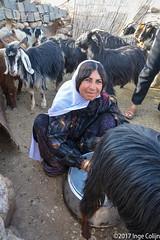 20180330-_DSC0177.jpg (drs.sarajevo) Tags: sarvestan ruraliran iran nomads farsprovince chamsatribe