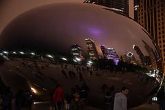CloudGate_114945 (gpferd) Tags: bean building chicago cloudgate construction landmark lights litlights night plant reflection tree illinois unitedstates us