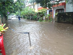 Flooded Panaji roads 6.7.18 (joegoauk73) Tags: joegoauk goa floods road rains water logging