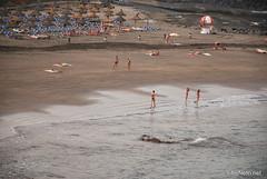 Playa de las Américas, Тенеріфе, Канарські острови  InterNetri  793