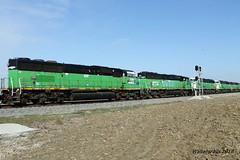 South Bound CSX at Middle King (waltersrails) Tags: up unionpacific csx csxt princeton indiana trains train railroad sd60m emd bn cbfx