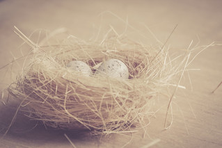 THE PRESENT WAS AN EGG LAID BY PAST AND HOLDS FUTURE INSIDE
