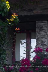 Andorra rural history: La Massana, Vall nord, Andorra (lutzmeyer) Tags: andorra anellaverda canoneos5dmarkiii casacolatelpui elpui europe iberia iberianpeninsula lamassanaparroquia lutzmeyer pirineos pirineus pyrenees pyrenäen vallnord alteshaus antic barri bauernhaus bauernhof bild dorf estiu farm farmhouse foto fotografie geschichte historia historie historisch history iberischehalbinsel image imagen imatge juli julio juliol july landleben livingrural lutzlutzmeyercom ländlichesleben mas masia oldhouse parroquia past photo photography picture poble pueblo rural rurallife sommer sonnenaufgang sortidadelsol summer sunrise tal valley verano viertel village lamassanavallnord