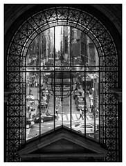 #library #fifthavenue #newyorkcitypubliclibrary #5thavenue #publiclibrary #newyork #2014 #nyc #ny #nycity #streetstyle #blackandwhitephoto #blackandwhite #bnw #bnwphotography #streetphotography #blackandwhitephotography #usa #unitedstates (JuNeLG) Tags: fifthavenue publiclibrary library newyorkcitypubliclibrary 5thavenue newyork 2014 nyc ny nycity streetstyle blackandwhitephoto blackandwhite bnw bnwphotography streetphotography blackandwhitephotography usa unitedstates