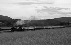 The Welsh Marches express (Andrew Edkins) Tags: 34046 braunton 34052 lorddowding bulleid battleofbritain westcountry mainlinesteam wistanstow shropshire england uksteam railwayphotography travel trip passenger welshmarches june 2018 summer canon light