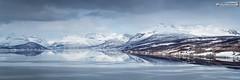 Balsfjord (dieLeuchtturms) Tags: fjord schnee norwegen meer wasserspiegelung 3x1 atlantik troms panorama balsfjord winter europa europe norge norway waterreflections reflection sea snow waterreflection no