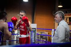 31251 - Face off (Diego Rosato) Tags: boxe pugilato boxing boxelatina nikon d700 2470mm tamron rawtherapee ting match incontro face off