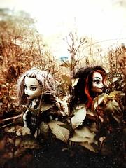 """○● Me gusta mucho una frase que dice : """" La amistad es un alma que habita en dos cuerpos; un corazón que habita en dos almas 👭. """".●○ (ivethmendez86) Tags: doll muñecas monsterhigh garden friend love cute kawaiii"""