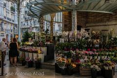 Mercado Colón, Valencia (Jose Antonio Abad) Tags: mercado paisajeurbano pública valencia arquitectura joséantonioabad atardecer españa comunidadvalenciana valència es