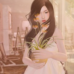 .i will take care of you. (Jasmine * Stardust it's magic) Tags: keke just magnetized justmagnetized stardust fameshed blush applique girl flower sunshine delicate sl second life new