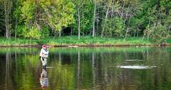 Fish On! (J Henry G) Tags: escanabariver upperpeninsulaofmichigan up michigan trout troutfishing flyfishing johnhenrygremmer