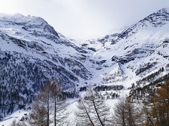 (Sara2496) Tags: berninaexpress treninorossodelbernina traveling italy tirano svizzera switzerland suisse travel landscape landscapephotography nature photography snow winter snowing saraguglielmi shoot shooting canon canon1000d camera vacanza