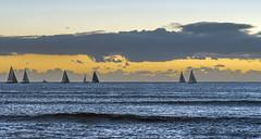 Aloha (acase1968) Tags: oahu sunset hawaii sail boats nikon d750 nikkor 24120mm f4g pacific waikiki honolulu sailing