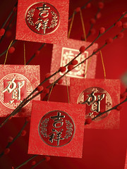Chinese New Year Decoration (Hafiz03) Tags: asia asian background best blessing blooming blossom branch bud calligraphy card carnival celebration character china chinese cluster copy culture decoration east ethnic exotic festival gold good holiday horizontal japan japanese luck new nobody oriental ornament packet prosperity prosperous red space spring traditional wishies year objects
