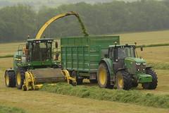 John Deere 7780i ProDrive SPFH filling a Broughan Engineering Mega HiSpeed Trailer drawn by a John Deere 6175M Tractor (Shane Casey CK25) Tags: john deere 7780i prodrive spfh filling broughan engineering mega hispeed trailer drawn 6175m tractor self propelled forage harvester jd green fermoy corrin hill traktor traktori trekker tracteur trator ciągnik silage silage18 silage2018 grass grass18 grass2018 winter feed fodder county cork ireland irish farm farmer farming agri agriculture contractor field ground soil earth cows cattle work working horse power horsepower hp pull pulling cut cutting crop lifting machine machinery nikon d7200