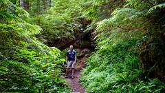 David on the Green Lake Trail (rich trinter photos) Tags: mountrainier washington unitedstates us hiking oldgrowth landscape trinterphotos richtrinter