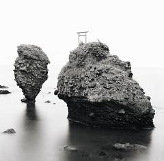 hasselblad (haco-otoko) Tags: analog filmisnotdead フィルム film mediamfomat 6×6 ハッセルブラッド hasselblad ブローニー 120 carlzeiss
