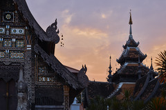 Sunset at Wat Chedi Luang (Thomas Mülchi) Tags: chiangmai chiangmaiprovince thailand 2018 buddhism buddhisttemple temple sunny changwatchiangmai th sunset dusk