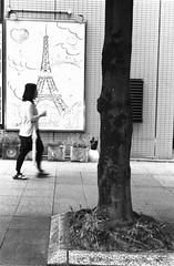 Untitled 20180616_4 (Satoshi Kondo) Tags: blackandwhite bnw bw blackandwhitephotography blackandwhitephoto bnwphoto bwphoto bnwphotography bwphotography blackandwhitepoto street streetphotography streetphoto streetsnap streets snap saturday japan filmphotography filmcamera filmphoto film leica leicaphoto leicaworld leicam3 m3 summicron monochrome