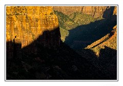 Sunrise in Zion Canyon (JohnKuriyan) Tags: utah zion canyon national park