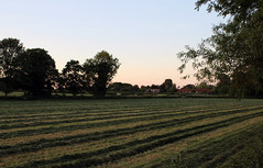 A Summer Evening (wit) Tags: oxfordshire easthagbourne dusk rural fields england landscape