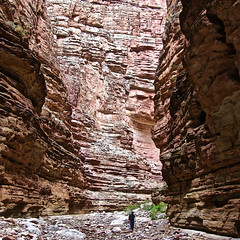 """""""Homeward Bound"""" (Halvorsong) Tags: grandcanyon canyon canyons arizona rock backcountry wild wilderness nature grandeur awe awesome scenic scenery paradise nationalparks adventure coloradoriver backpacking camping explore discover wow photography art composition red wall walls solo isolation solitude reflection life hiking epic usa america thewest naturephotography contrast perspective giant small man mankind humanity home spirit geology southwest halvorsong"""