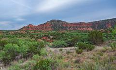 Caprock Canyons State Park, Texas (Rick Knepper) Tags: fujifilmgfx50s gf3264mmf4rlmwr
