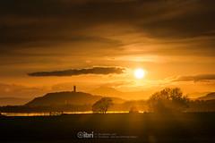 Cambus - 10 May 2018 - 54-2.jpg (ibriphotos) Tags: dogwalk onetree warm wallacemonument river benledi cambus riverforth sunset summer spring aroundtheforth clackmannanshire evening goldenhour sky sunsets