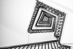 Hamburg - Chilehaus (peterkaroblis) Tags: hamburg treppenhaus staircase haus house building gebäude innenansicht architektur architecture interiordesign schwarzweiss blackwhite innenarchitektur interieur interiorarchitecture lines curves linesandcurves geometry geometrie
