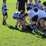 Petersham u8_6