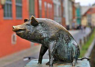 Schwein gehabt....................