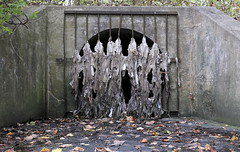 Lair Of The Whitefish (95wombat) Tags: pollution plastic water river sewer filth slime degradation amsterdam newyork