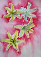 Liliums (benilder) Tags: flores floral lilium red rojo acuarela aquarelle watercolor watercolour benilde