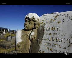 Rest In Peace (tomraven) Tags: cemetery grave graveyard tombstone old ancient generations settlers tomraven aravenimage q32018 sony a65