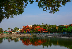 City park with the lake (phuong.sg@gmail.com) Tags: abstract art backdrop background beam beautiful beauty blue bright calm city cityscape clouds color colorful day effect flora flowers focus foliage garden green lake lawn light lush natural nature park pattern red reflections row scenic season shiny sky soft spring summer sun sunny texture trees vietnam