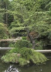 Mini-Island (Mr.LeeCP) Tags: gardens summer seattle washington japanese