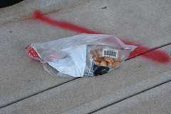 Someone lost their donut holes :( (Adventurer Dustin Holmes) Tags: donutholes food 2018 bag abandoned trash litter sidewalk springfieldmo springfieldmissouri springfield barcode pastry pastries dessert sweets sack gj0519067