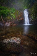 Courthouse Falls (Reid Northrup) Tags: rrs nature fineartphotography moss nikon reidnorthrup river rocks stream longexposure water waterfall trees forest northcarolina landscape
